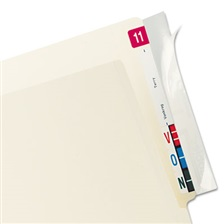 Tabbies® Self-Adhesive Label/File Folder Protector, End Tab, 2 x 8, Clear, 100/Box