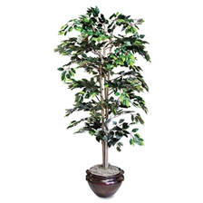 NuDell™ Artificial Ficus Tree, 6-ft. Overall Height