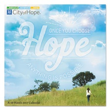 AT-A-GLANCE® Day Dream City Of Hope Wall Calendar, 12 x 12, 2018-2019