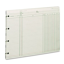 Wilson Jones® Accounting, 9-1/4 x 11-7/8, 100 Loose Sheets/Pack